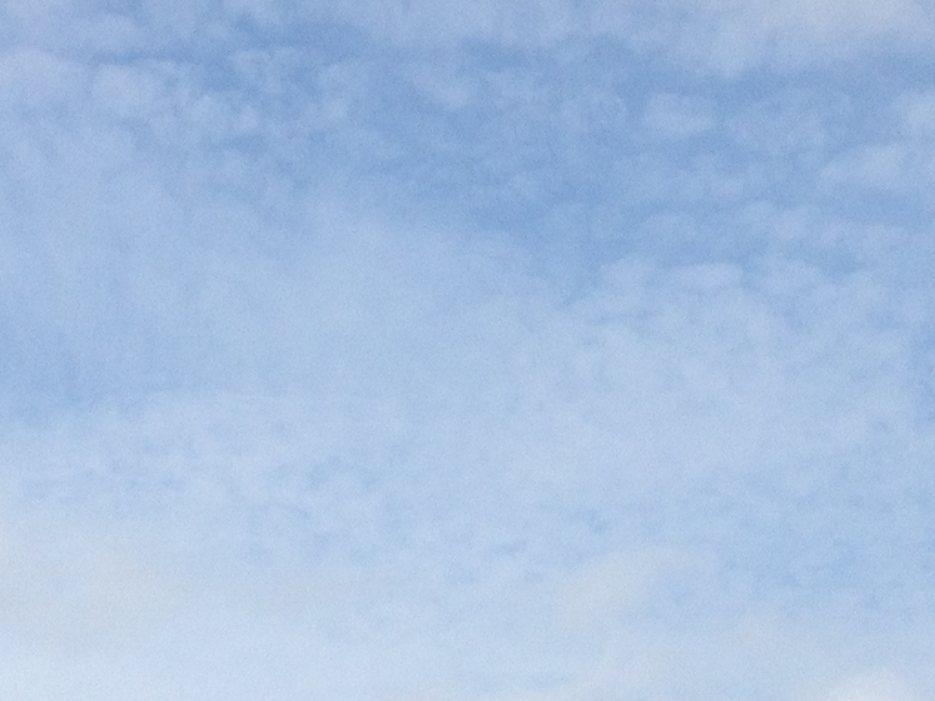 青空の白いうろこ