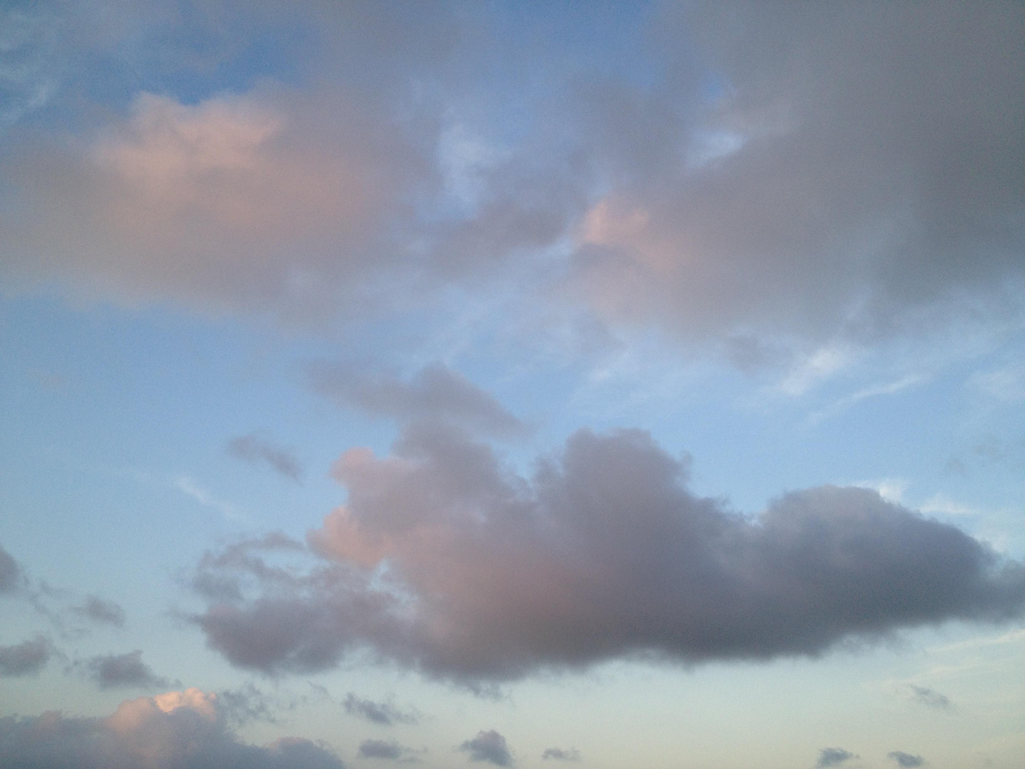 動物みたいな雲