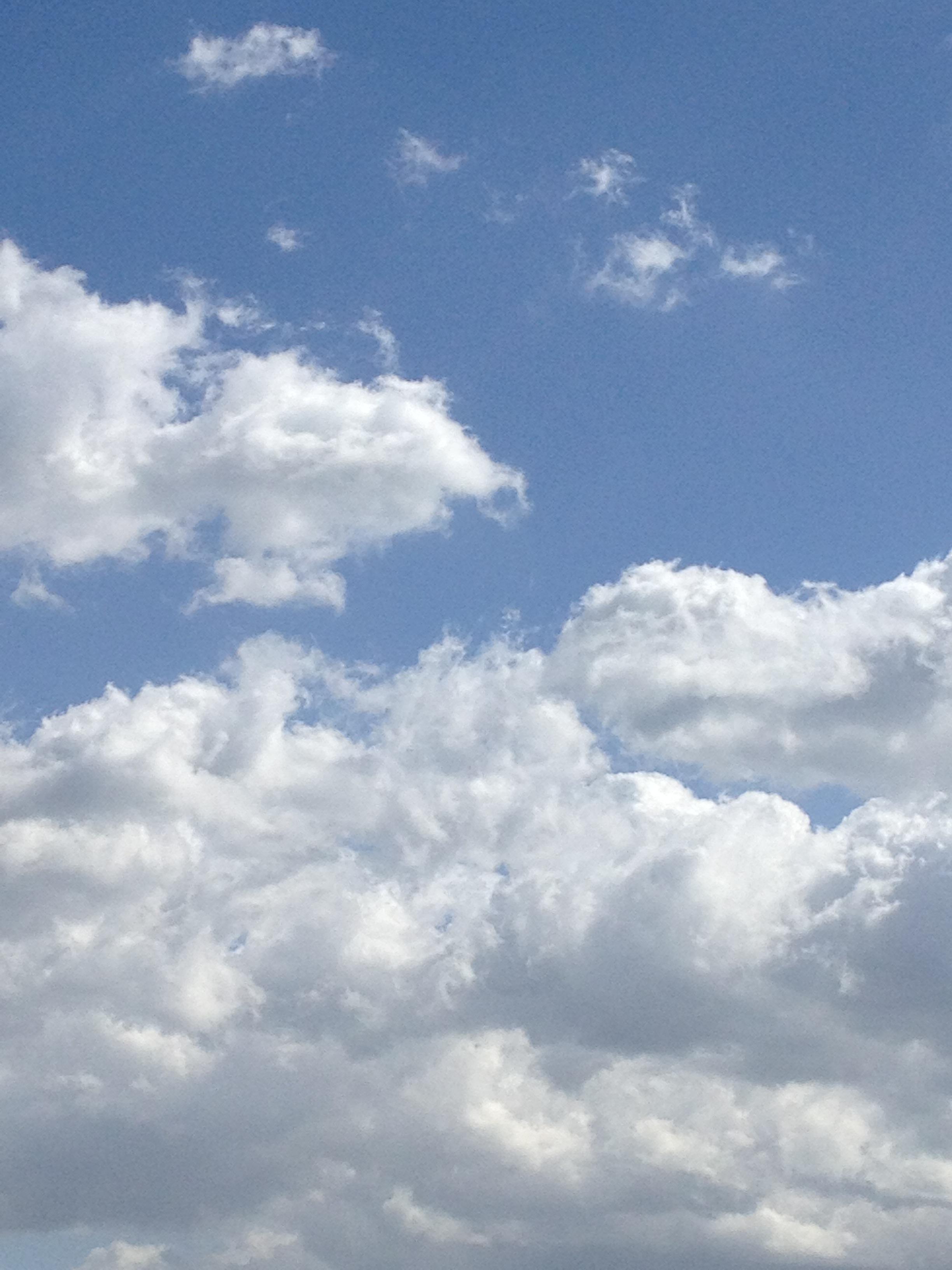 入り乱れる雲