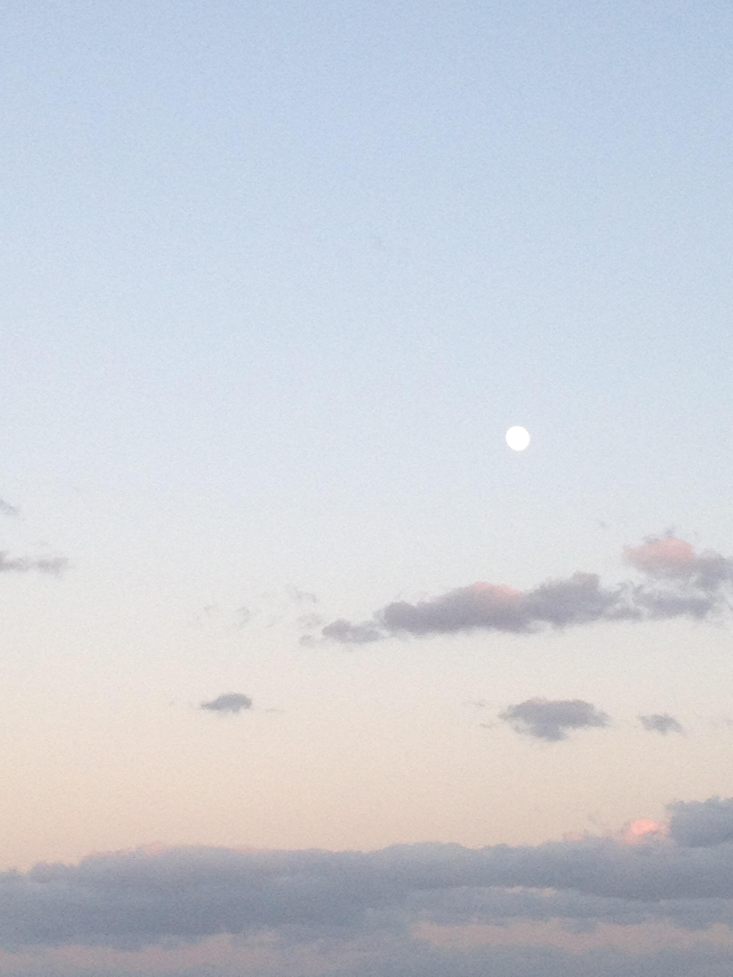 夕方の月と雲