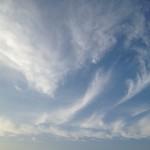 なびく雲のすすき