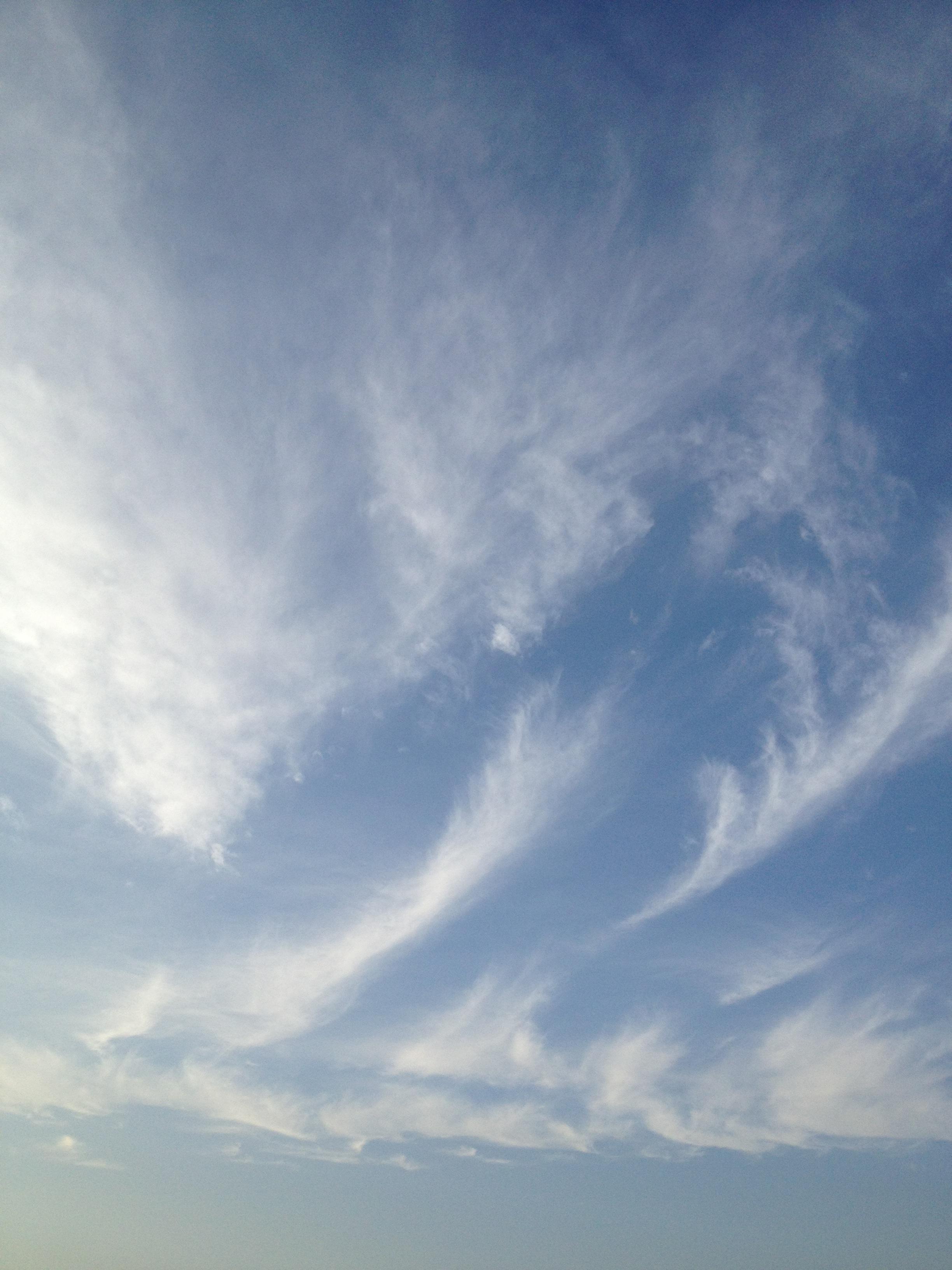 広がる薄い雲
